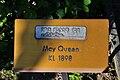 Rapperswil - Duftrosengarten - Harmonie May Queen KL 1898 2010-06-25 18-33-30.JPG