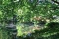 Rhododendronpark Bremen 20090513 098.JPG