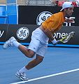 Richard Gasquet Oz08 closeup.jpg