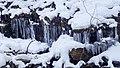 Ricketts Glen State Park winter hike 9 (44330266285).jpg