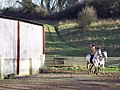 Riders enjoying the sun near Baverstock - geograph.org.uk - 329667.jpg