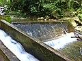 Rio Grande - Pau de Fome - panoramio (2).jpg