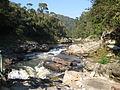 River, Ranomafana National Park (4041897269).jpg