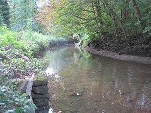 Brent Park (Hendon) - River Brent in Brent Park