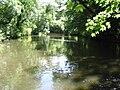 River Crane01.JPG