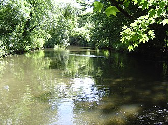 River Crane, London - River Crane in Crane Park Whitton below the nature reserve and powder mills site