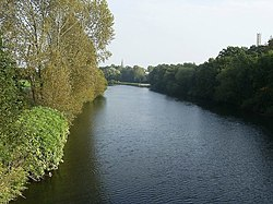 River Taff - geograph.org.uk - 1530156.jpg