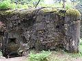Rokytnice v Orlických horách, Horní Rokytnice, R-S 81 (rok 2010; 04).jpg