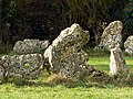 Rollright Stones (part), Oxfordshire - geograph.org.uk - 605685.jpg