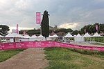 Roma Race for the Cure in 2018.08.jpg