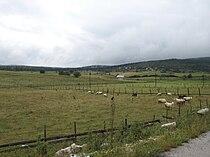 Romanija Landscape.JPG