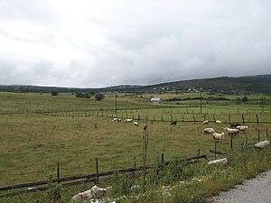 Romanija - Image: Romanija Landscape