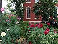 Rose garden on East Capitol Street summer 2012.jpg