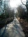 Rossway Lane, south of Tinker's Lodge - geograph.org.uk - 130819.jpg