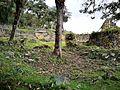 Ruïnes de Kuelap entre la vegetació.jpg