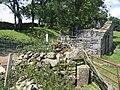 Ruins at Old Accraplatts - geograph.org.uk - 718163.jpg