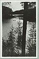 Runebergin kumpu, Takaharju, Lammasharju, Lahti Takaharjun ja Lammasharjun välissä, ADAM 1930s–1940s PK0217.jpg