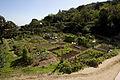 Rutes Històriques a Horta-Guinardó-can soler 06.jpg