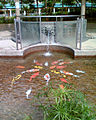 SLYPlayground WaterFeature.jpg