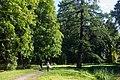 Saint Petersburg Botanical Garden - panoramio (2).jpg