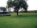 Salimgarh Fort 69.jpg