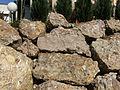 Sandstone.4307.JPG