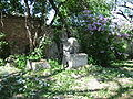 Sankt Marxer Friedhof Flieder.jpg