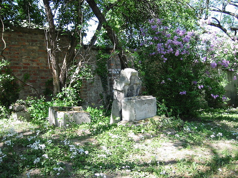 Datei:Sankt Marxer Friedhof Flieder.jpg