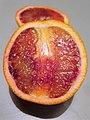 Sapindales - Citrus sinensis - 17.jpg