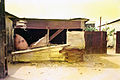 Scénographies Urbaines Douala 2002-2003 19.JPG