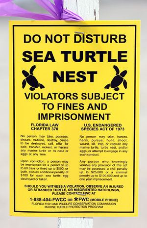 English: Legal posting related to sea turtles ...