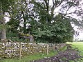 Sean Caer Mound wall, Sanquhar, Dumfries & Galloway, Scotland. An ancient fortification site.jpg