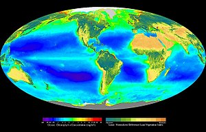 Photosynthesis - Composite image showing the global distribution of photosynthesis, including both oceanic phytoplankton and terrestrial vegetation. Dark red and blue-green indicate regions of high photosynthetic activity in the ocean and on land, respectively.