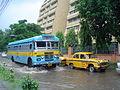 Sector-V Saltlake - Kolkata 2007-08-13 08510.JPG