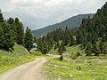 Seiser Alm - panoramio - Frans-Banja Mulder (4).jpg