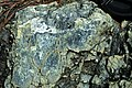 Serpentinite (East Dover Ultramafic Body, Ordovician; roadcut east of East Dover, Vermont, USA) 9.jpg