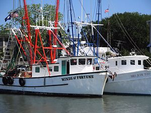 Mount Pleasant, South Carolina - Fishing boats on Shem Creek