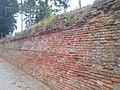 Sieniawa - mur obronny (1).jpg
