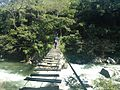 Sistema silvopastoril en cuenca alta del río Coapa, Pijijiapan, Chiapas 29.jpg