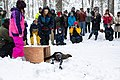 Snow forest - 49364622896.jpg