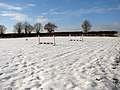 Snow in paddock south of Surlingham Lane - geograph.org.uk - 1651266.jpg
