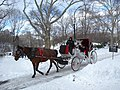 Snowy carriage ride CP jeh.jpg