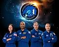 SpaceX Crew-1 Commercial Crew Portrait.jpg