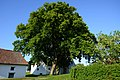 Spannberg, Linden am Quent, GF-075 (4).jpg