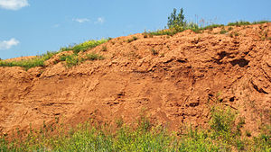 Spearfish Formation - Image: Spearfish Formation redbeds (Permian and or Triassic; construction cut in Sundance, Wyoming, USA) 3 (19238491420)