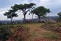 Spire Memorial -Mpumudde hill 3.jpg