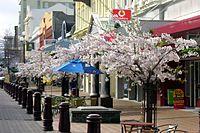 Spring in Esk Street - Invercargill.jpg