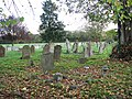 St Mary's church - churchyard - geograph.org.uk - 1572210.jpg