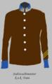 Stabswachtmeister der k.u.k. Traintruppe.png