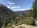Stanislaus National Forest, Pinecrest, United States May 07, 2017 020244.jpeg